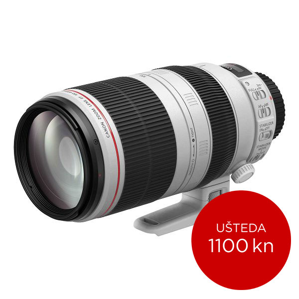 Canon Objektiv EF 100-400mm f/4.5-5.6 L IS II USM